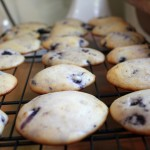 Lemon Blueberry Cookies Cooling